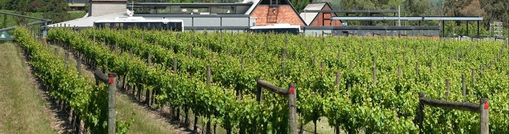 Things to Do at Rochford Wines Yarra Valley