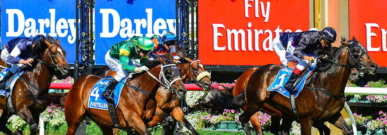 Your Ultimate Guide to the Melbourne Cup