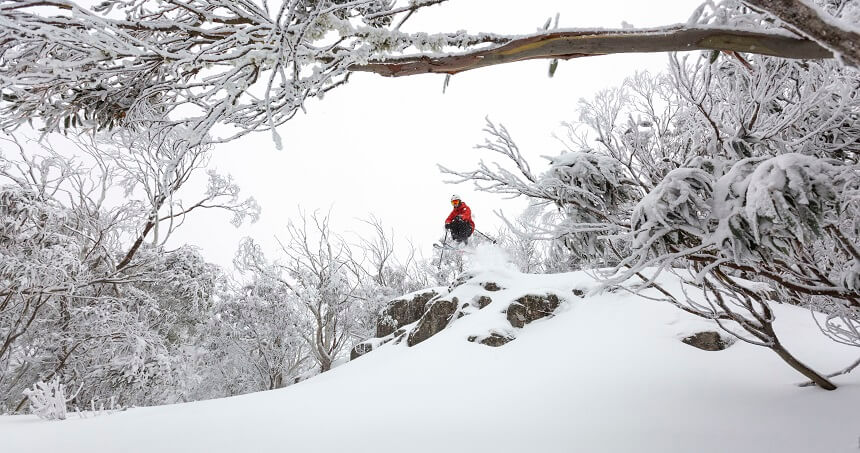 Mount Buller return on a different day tour - skiing